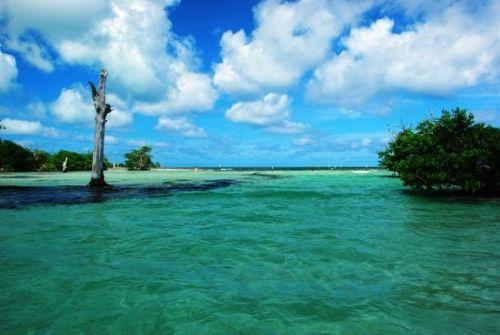 Hacienda Tres Rios lagoon