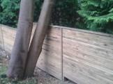 fencing24