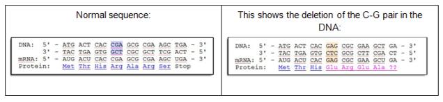 DNAmutations2.png