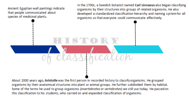 HistoryOfClassification