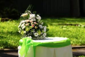 affordable wedding ceremony and outdoor wedding reception