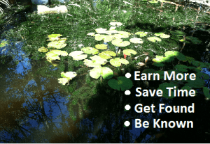 earn more gfx