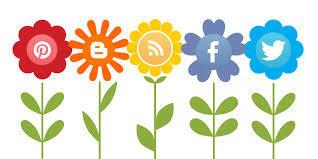 SOCIAL MEDIA FLOWERS