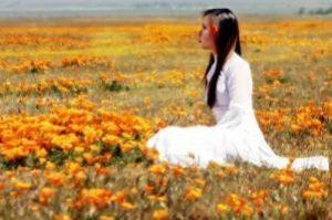 geisha_in_sea_of_poppies
