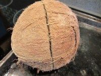Coconut after roasting.