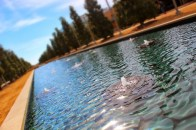 UT Dallas Reflection Pool