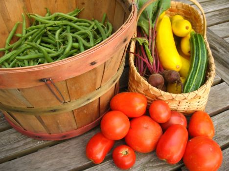 green-basics-local-food-farmers-market-vegetables