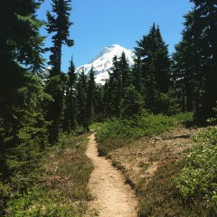 Hiking up to Cairin Basin (Mt. Hood, OR)