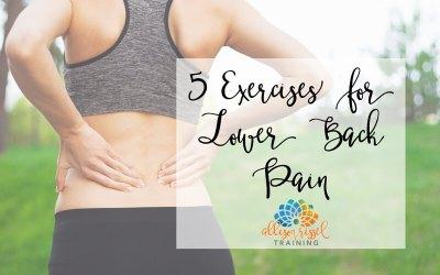 5 Exercises for Lower Back Pain
