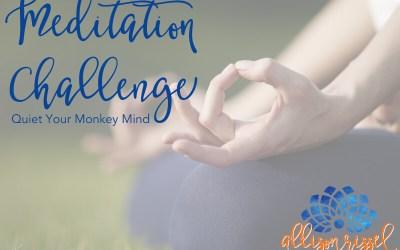 Meditation Challenge – Tame your Monkey Mind