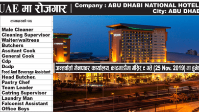 Photo of 940 Candidates Required for Abu Dhabi National Hotels