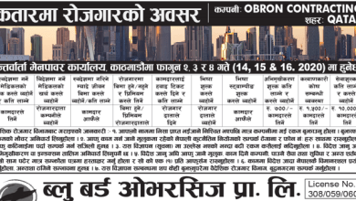 Photo of Vacancy from Qatar for various post
