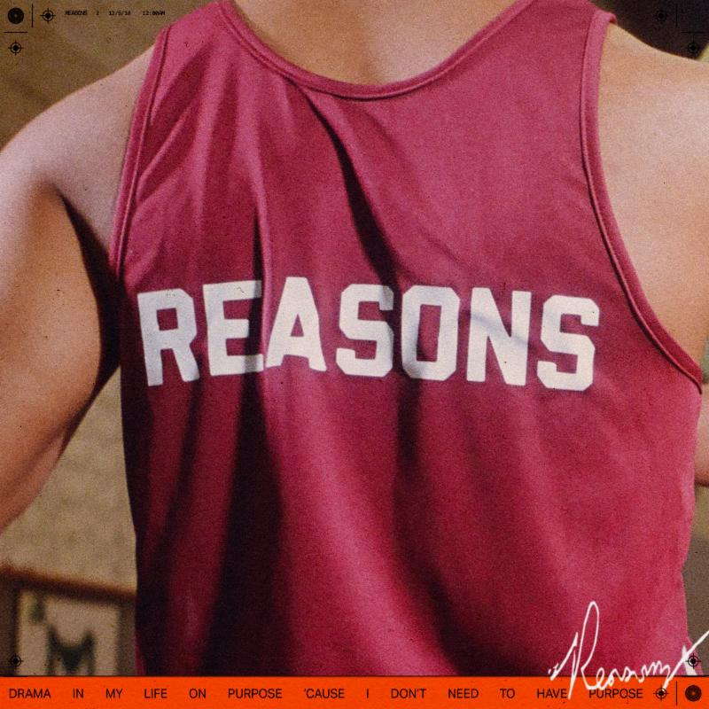 Cautious Clay – REASONS