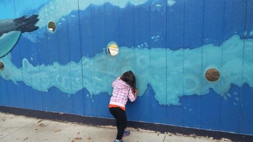 Watching construction of the new aquarium