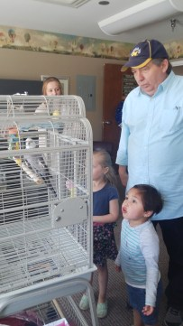 Visiting the bird in grandpa's office