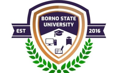 Borno State University logo