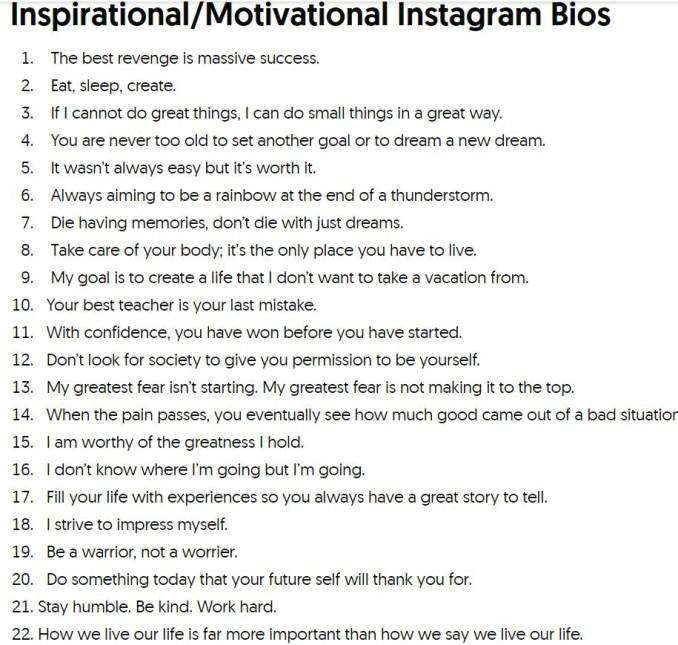 instagram bio pic