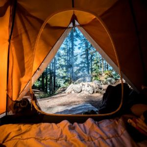 Planning a Family Camping Trip Report