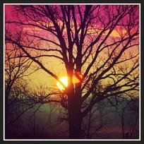 Sunrise - Rainbow Filter