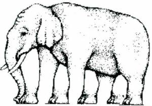 elephantuncountable