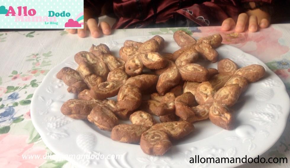 biscuits-papillons-deux-couleurs