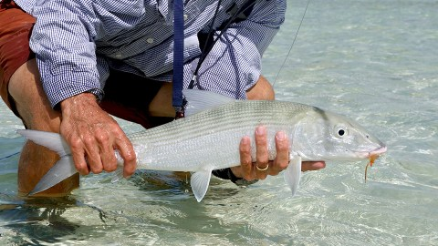 RS Kio Kio Bonefish Toau Tuamotus Eastern anchorage