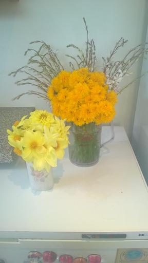 Vases 4