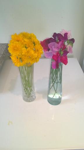 Vases 9