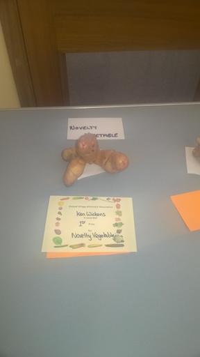 novelty-veg-prizewinner