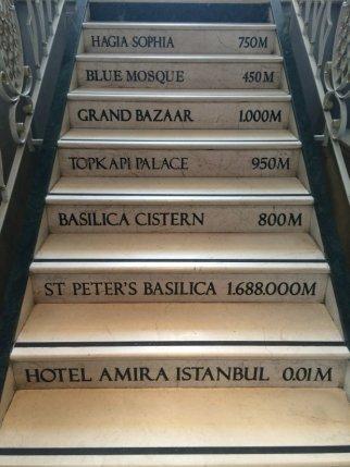 amira steps