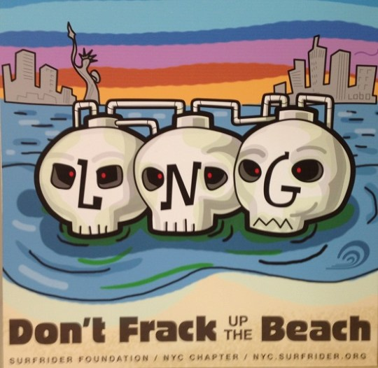 "artwork by Surfrider Nick Lynn, he said ""All the risks in this (project) make no sense to me"""