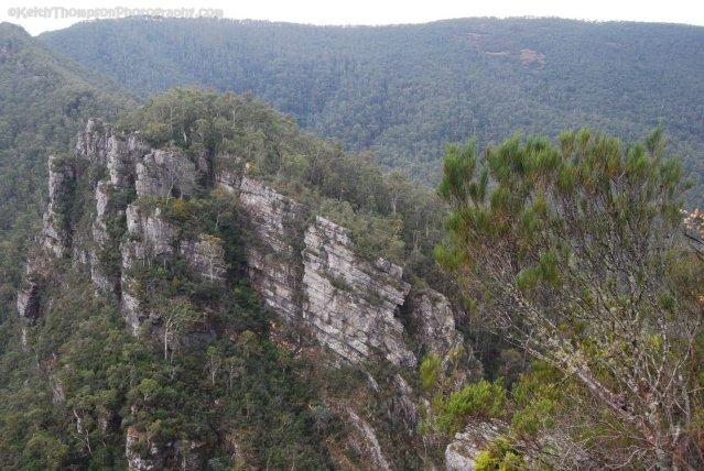 Alum Cliffs Reserve.015 -10h35m13s2019-03-03