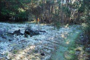 Mount Michael Blue Tier.019 11h07m16s2019 06 23