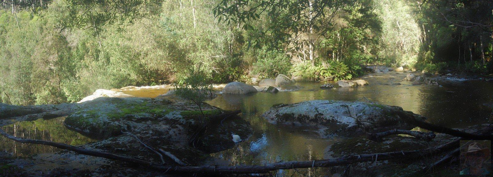 Harridge Falls Top