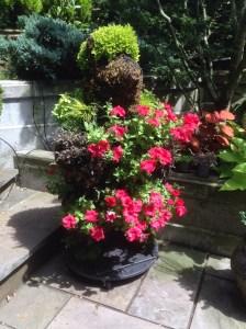 RMassa_garden01