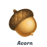 Acorn Photo Editor free download