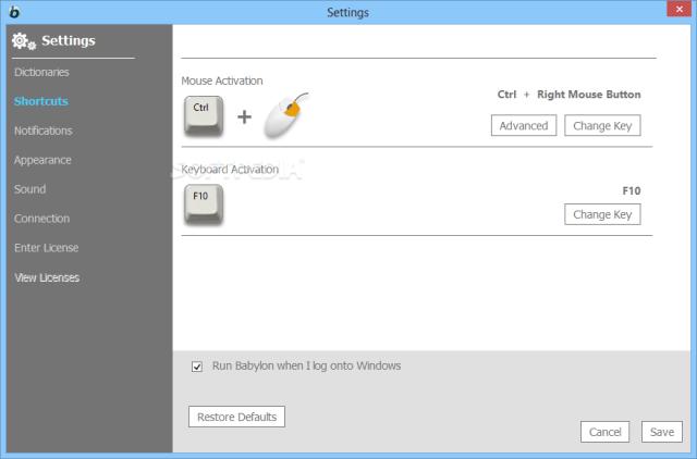 Babylon Pro NG 11 Full Version Download