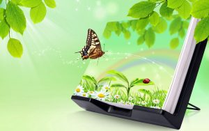 3d Images of Nature for Desktop Background with Butterfly and Green Leaves