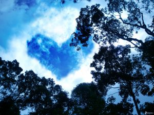 Attachment for Heart Shaped Cloud 22 of 57 - Love Cloud on The Sky