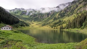 Nature Wallpaper with Lac de Gers Picture