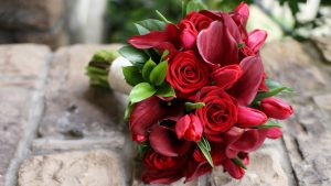 Top 25 Pictures Of Red Roses - #25 - with Tulips