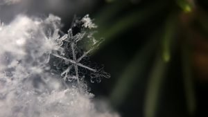 Beautiful Nature Wallpaper Big Size #23 - Snow Flakes Picture in 4K