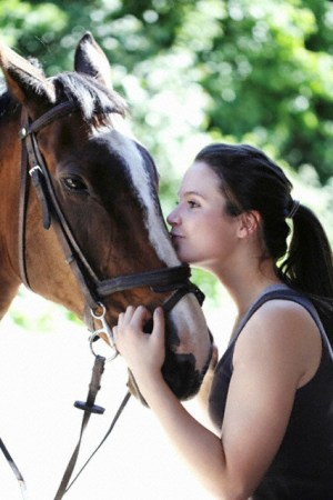 all points equine sports medicine