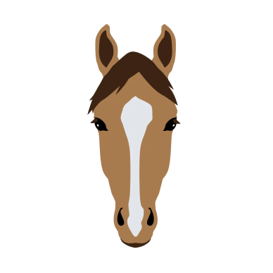 Horse pony quizzes on coat colors markings gaits breeds for kids leaderboard for the face markings quiz ccuart Gallery