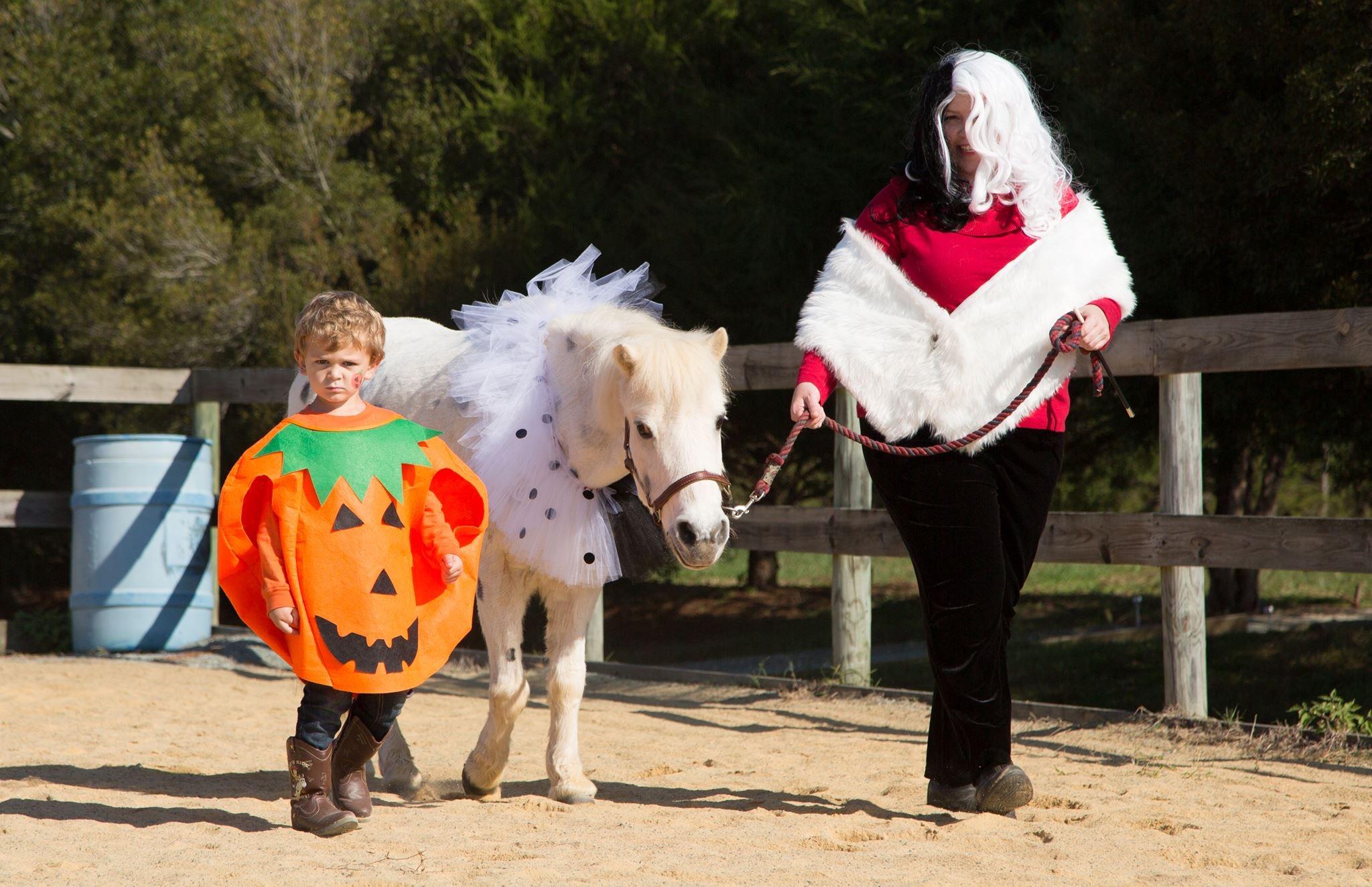 Fall Festival & Horse Show