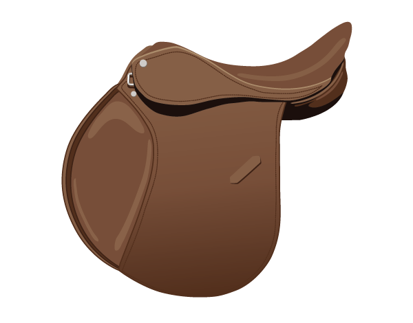 Identify Horse Saddle Types Play the Name the Saddle Parts Game
