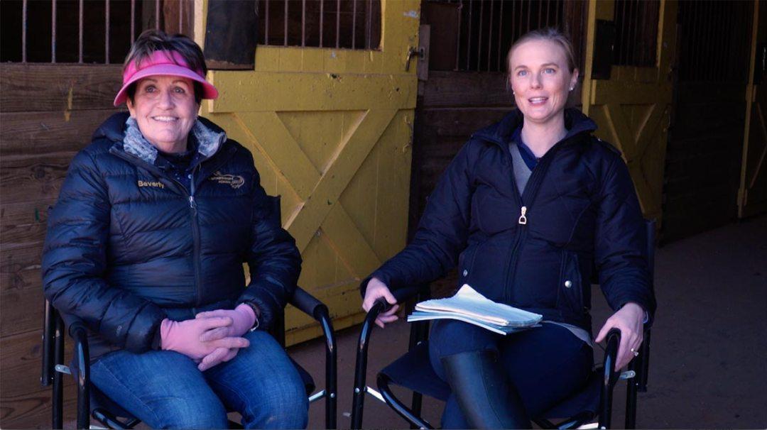 Allpony hunter horses ponies video Susan Bev