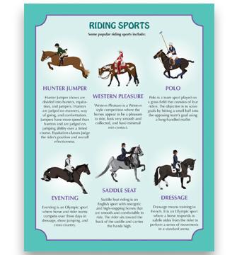 HorseSports_Square
