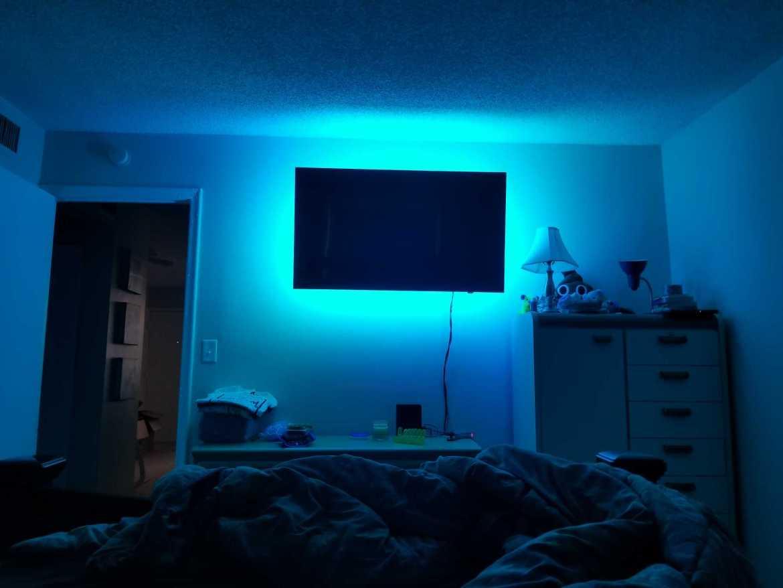 led lights fort lauderdale