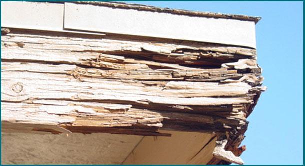 allpro-painters-wood-rot-repair